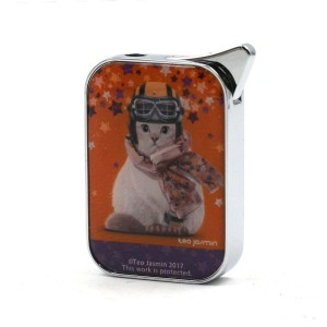 Briquet Champ Collection  Teo Jasmin Casque