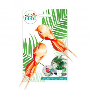 Déco Plantes – Lot de 2 Oiseaux Orange B CD3843