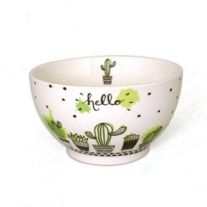 Bol Cactus collection Arizona en Porcelaine 480 ml