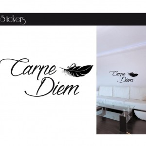 Stickers citation - Carpe Diem avec Plume