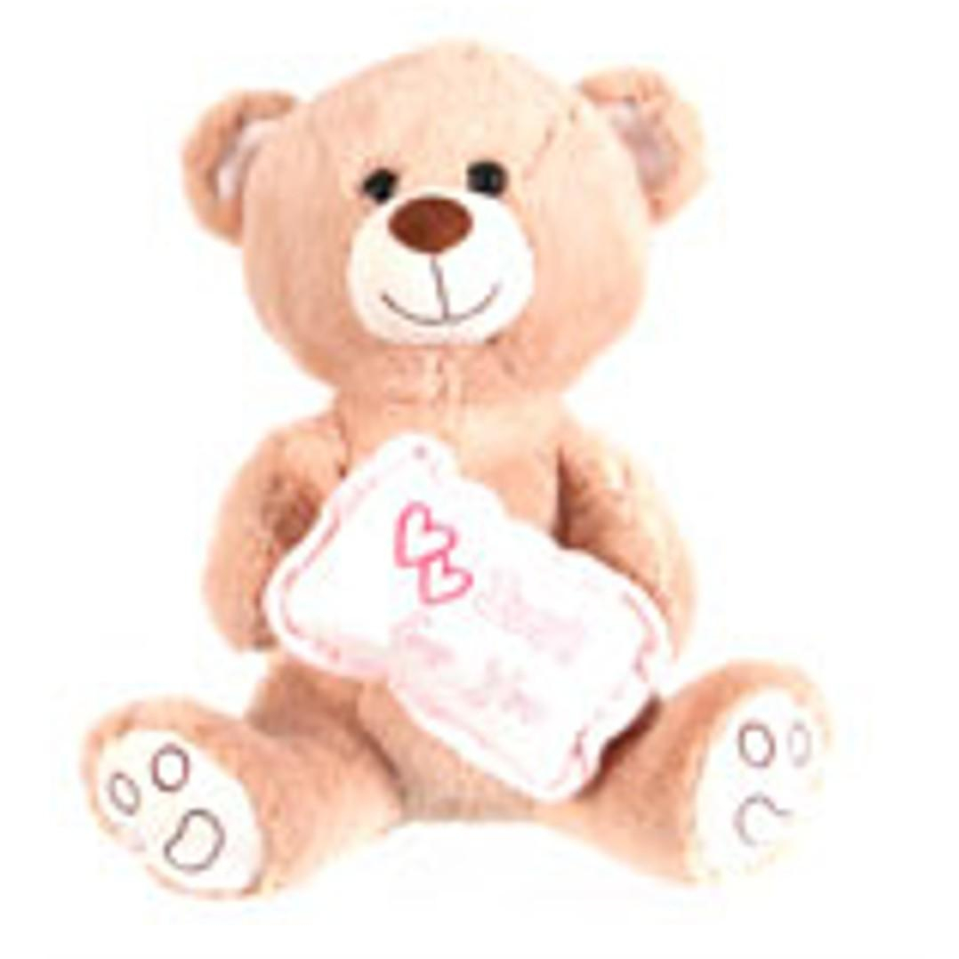 Peluche Ourson avec son Coussin - Just For You